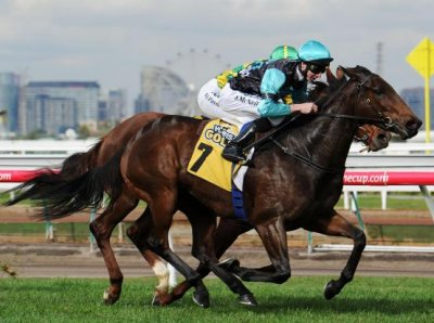 Hot Mama Wins at Flemington