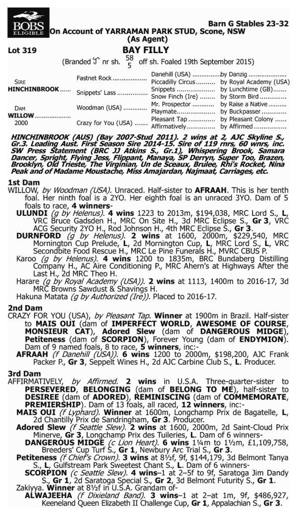 Hinchinbrook Filly Pedigree