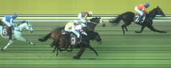 Archery Peak wins race 5 at Cranbourne on 06/07/17