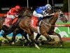 Brave Smash Winning the Group 1 Manikato Stakes at Moonee Valley